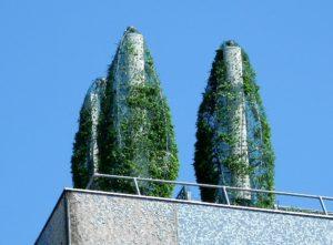 Arbustes sur un toit d'immeuble